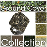 Substances Ground Cover Collection