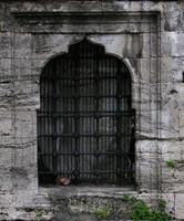 window  b016