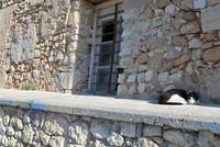 Building_Crete_0003
