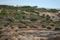Landscape_Algarve_0007
