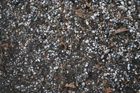 Ground_Texture Pack (4)