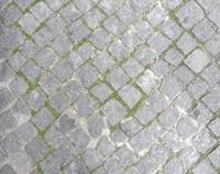 Stone Sidewalk 21