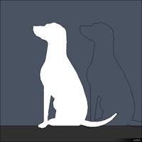 2D Dog 00298se