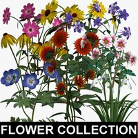 TX Flower Collection 21