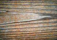 Wood 0950