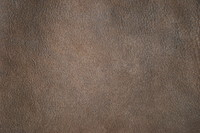 Leather_Texture_0001