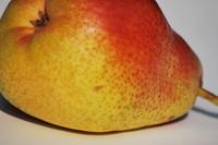 Fruit_Pear_0001