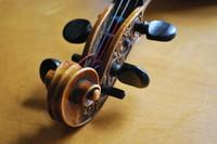 Violin_0004