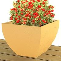 Garden.vase_A