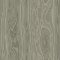 Gray Ash Wood Tileable Texture