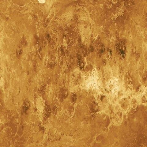 Venus texture