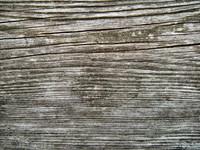 Wood 0957