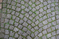 Paving_Texture_0001