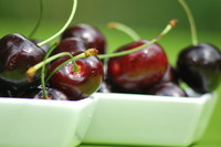 Fruit_Cherry_0002