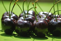 Fruit_Cherry_0003