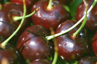 Fruit_Cherry_0006