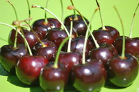Fruit_Cherry_0007