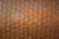 Metal_Texture_0005