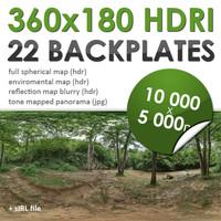 HDRI Forest w/backplates