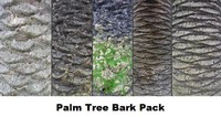 Palm Tree Bark Pack