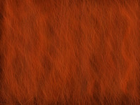 Auburn Red Hair Texture