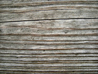 Wood 0952