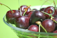 Fruit_Cherry_0004