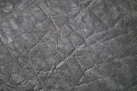 Hide_Elephant_Texture