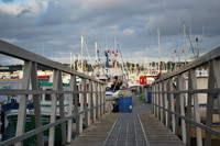Harbor_0009
