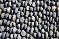 Many pebbles ground texture