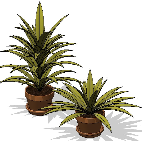 Potted Plant 3.jpg