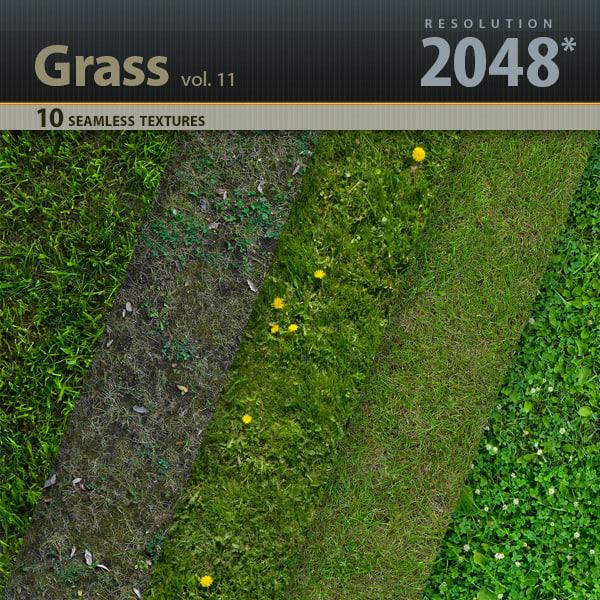 Title_Grass_vol_11.jpg