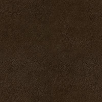 carpet_brown