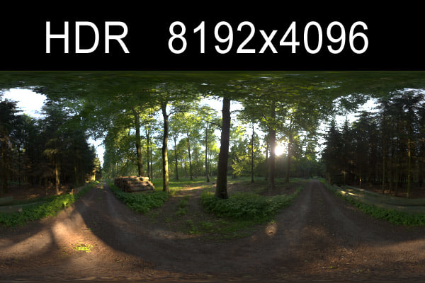 forest1_preview.jpg