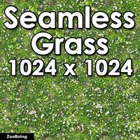 Grass 021 - Seamless Texture
