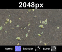 2x Leaves on Sand 2 - Set