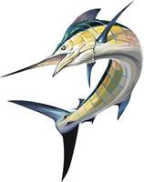 vector fish 22
