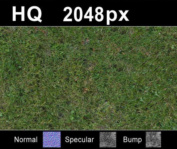 lawn5_tex_close.JPG