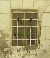 window w 002