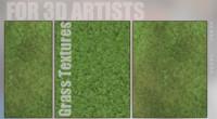 Grass textures full