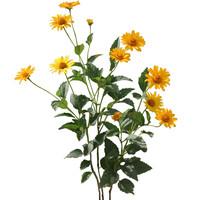 Flower_V_14