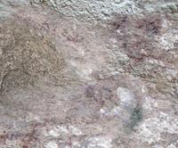 Rock Texture I