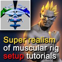 Super realism of muscular rig setup