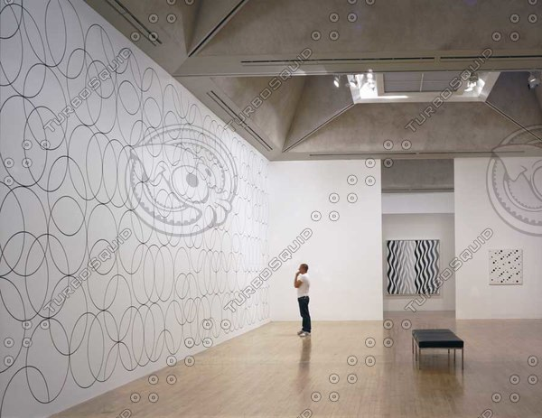 bridget_riley_exhibition_s050210_pc.jpg