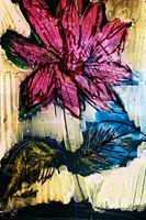 flower Az 00016