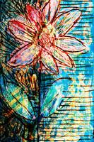 Flower Az 00027