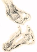 legs - foots
