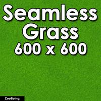 Grass 006 - Seamless Texture