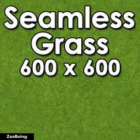 Grass 019 - Seamless Texture
