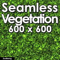 Grass 010 - Seamless Texture
